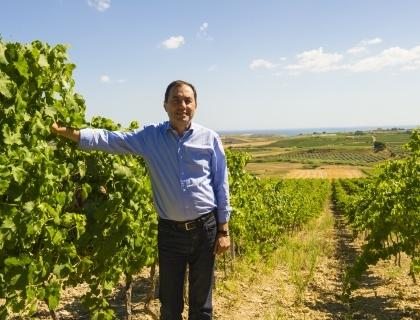 Vito Varvaro, presidente Cantine Settesoli